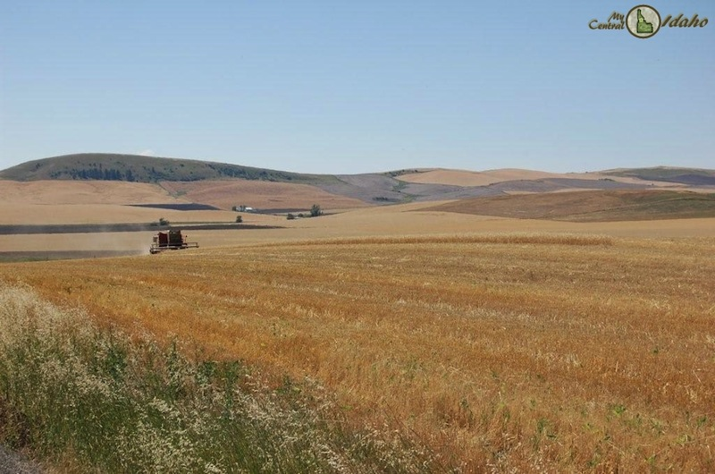 Demand for Farmland exceeds supply