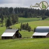 Farming on the Camas Prairie