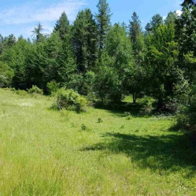 Land For Sale Harpster Idaho